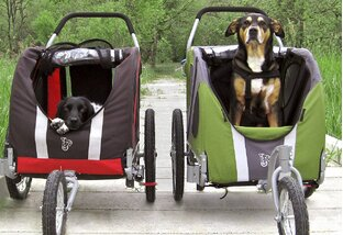 On a Roll: Pet Strollers & More