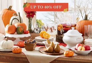 Tableware Up to 40% Off
