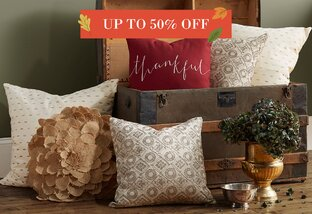 Pillows Up to 50% Off