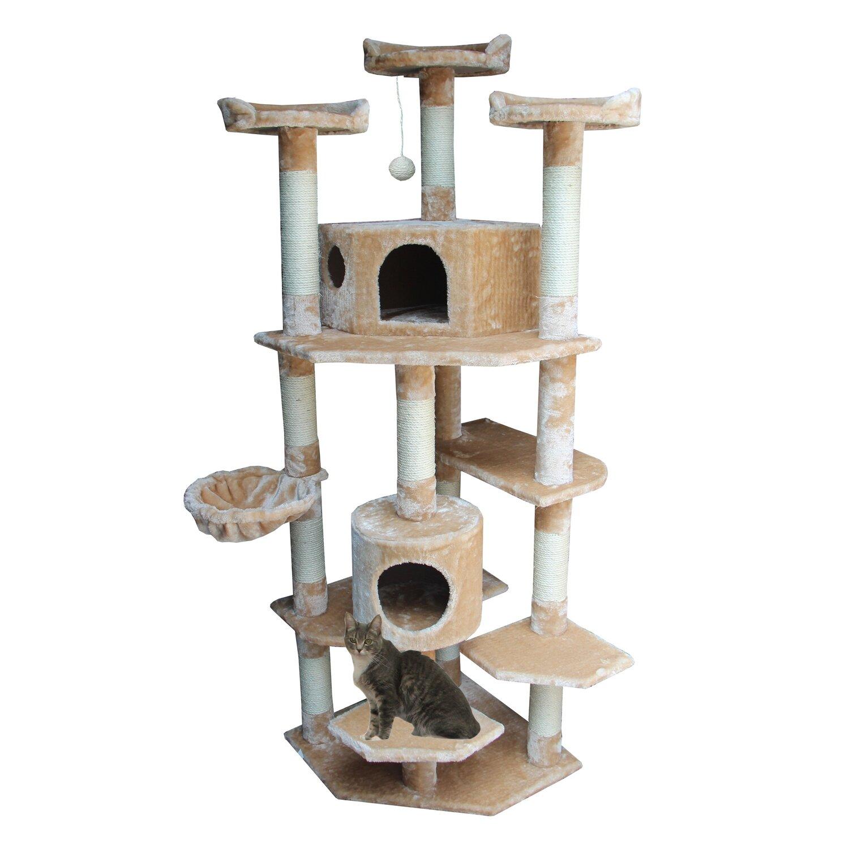Kitty Mansions Denver Cat