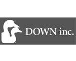 Down Inc.