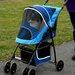 Pet Gear Sport Standard Pet Stroller