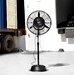 "Luma Comfort 24"" Oscillating Pedestal Fan"