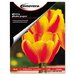 Innovera® Glossy Photo Paper, 100 Sheets/Pack