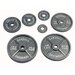 USA Sports by Troy Barbell 45 lbs Olympic Plate in Gray