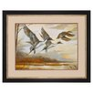 Propac Images Pintails Framed Painting Print
