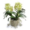 New Growth Designs Faux Vanda Orchid