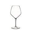 Luigi Bormioli Atelier Pinot Noir Wine Glass (Set of 6)