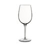 Luigi Bormioli Juicy Reds Wine Glass (Set of 2)