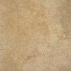 """Marazzi Stone Age 6"""" x 6"""" Porcelain Field Tile in Sequoyah"""
