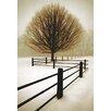 McGaw Graphics Solitude by David Lorenz Winston Photographic Print