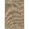 Wildon Home ® Olivia Distressed Traditional Tan & Brown Area Rug