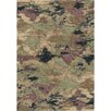 Wildon Home ® Bergette  Area Rug