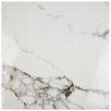 """EliteTile Classique 18"""" x 18"""" Ceramic Field Tile in White"""