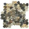 EliteTile Brook Random Sized Natural Stone Polished Mosaic Tile in Multicolored