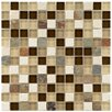 """EliteTile Sierra 0.875"""" x 0.875"""" Glass and Natural Stone Mosaic Tile in Nassau"""