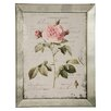 Winward Designs English Rose Framed Graphic Art