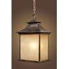 Elk Lighting San Gabriel 1 Light Outdoor Hanging Lantern