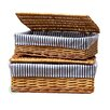 Quickway Imports 2 Piece Lined Storage Baskets with Lid Set
