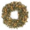 National Tree Co. Glittery Bristle Pine Pre-Lit Wreath