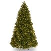 National Tree Co. 7.5' Green Scandinavian Fir Artificial Christmas Tree with 750 Clear Lights and Stand