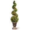 National Tree Co. Pre-Lit Cedar Spiral Topiary in Urn