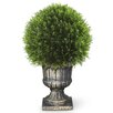National Tree Co. Upright Juniper Ball Topiary in Urn
