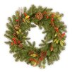 National Tree Co. Decorative Wreath with Berries Pine Cones and Leaves