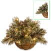 National Tree Co. Glittery Bristle Pine Wall Basket with 15 Warm White Battery Operated LED Lights