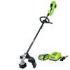 GreenWorks Tools GMAX Digipro Brushless 40 Volt Blower with 2.0Ah Battery and Charger
