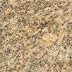 "MS International 12"" x 12"" Granite Field Tile in Giallo Veneziano"