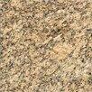 "MS International 18"" x 18"" Granite Field Tile in Giallo Veneziano"