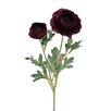 Sage & Co. Fleur Double Ranunculus Stem (Set of 6)