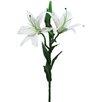 Sage & Co. Fleur Double Lily Stem (Set of 6)