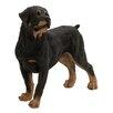 Woodland Imports Captivating Dog Figurine