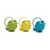 Woodland Imports Decorative Amazing Water Pail (Set of 3)