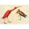 Buyenlarge 'Scarlet Ibis' by John James Audubon Painting Print