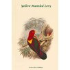 Buyenlarge 'Lorius Flavo-Palliatus Yellow-Mantled Lory' by John Gould Graphic Art