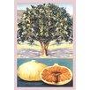Buyenlarge Fig Tree Painting Print