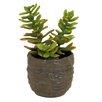Creative Branch Faux Succulent in Pot