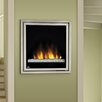 Napoleon Electric Insert Fireplace