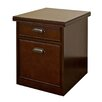 kathy ireland Home by Martin Furniture Tribeca Loft 2-Drawer Mobile File Cabinet