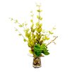 Creative Displays, Inc. Lonicera Leaf and Echeveria in Vase