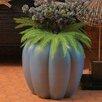 Global Views Poppy Pod Vase