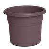 Bloem Posy Round Pot Planter (Set of 12)