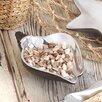 Zingz & Thingz Sea Conch Nut Bowl