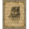 Melissa Van Hise Owl on Antique Linen Framed Art