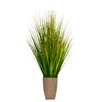 Laura Ashley Home Onion Grass in Round Hemp Rope Container