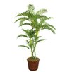 Laura Ashley Home Tall Palm Tree in Planter