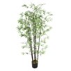 Laura Ashley Home Bamboo Tree in Pot